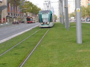 Nem csak a villamos lehet zöld (forrás: www.aquarex.hu)